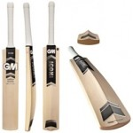 GM Icon, Cricket Bat