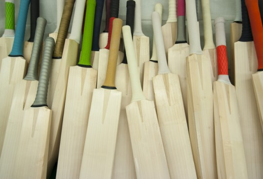 What Makes a Good Cricket Bat
